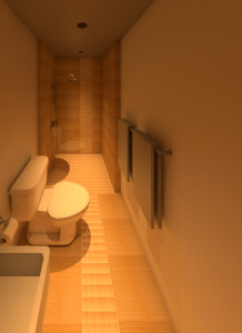 Grace_St___Bathroom.rvt_2015-Apr-08_03-40-52PM-000_3D_View_5