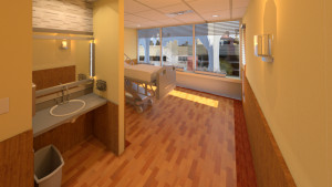 Medstar_Room_231_remodeling.rvt_2015-Feb-04_12-22-59PM-000_3D_View_10